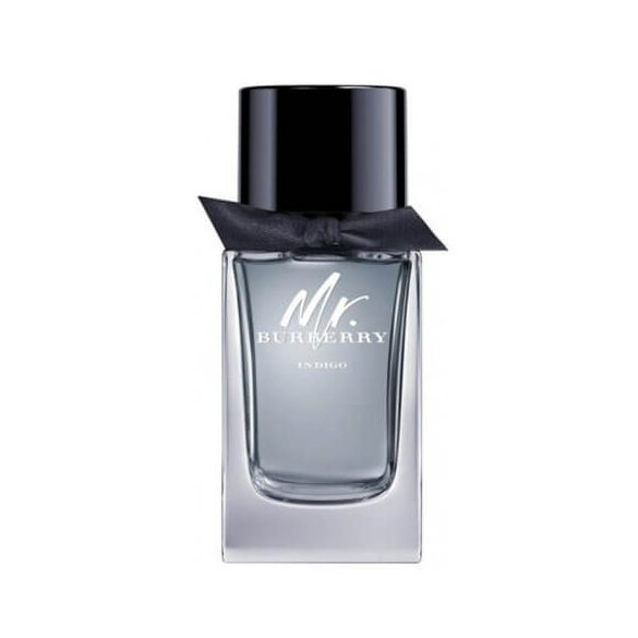 Burberry Mr. Burberry Indigo EDT 100ml